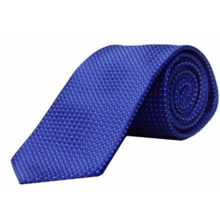 Blackberry Blue Tie