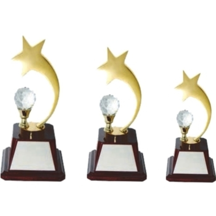 Exclusive Star Trophy