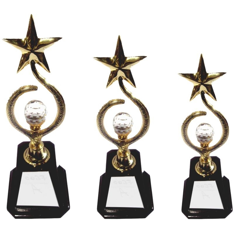 Star Shape Metal Awards