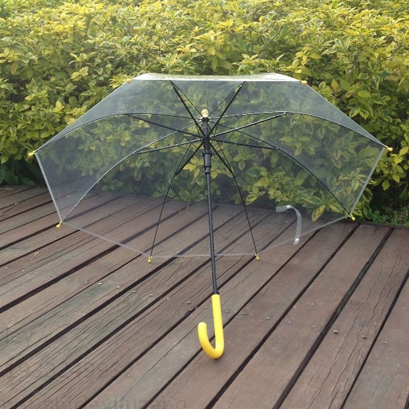 Straight 6 Panel Transparent Umbrella